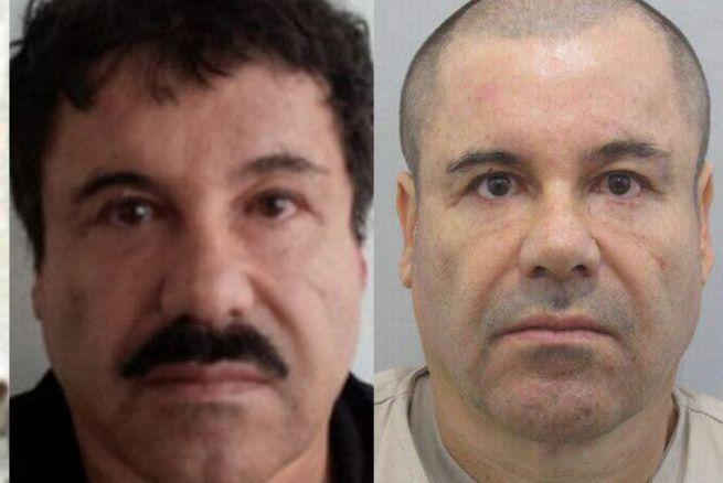 """Reforma: """"El Chapo"""" se hizo un implante en los genitales a causa de disfunción eréctil"""