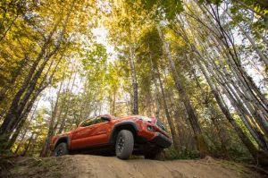 Toyota Tacoma es la pickup de tamaño mediano mejor vendida en Estados Unidos, muy por encima de la Ranger y Colorado