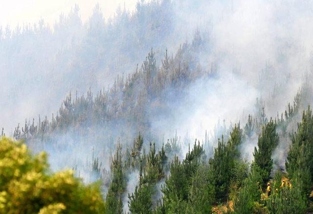 Mueren 7 por incendios en Chile