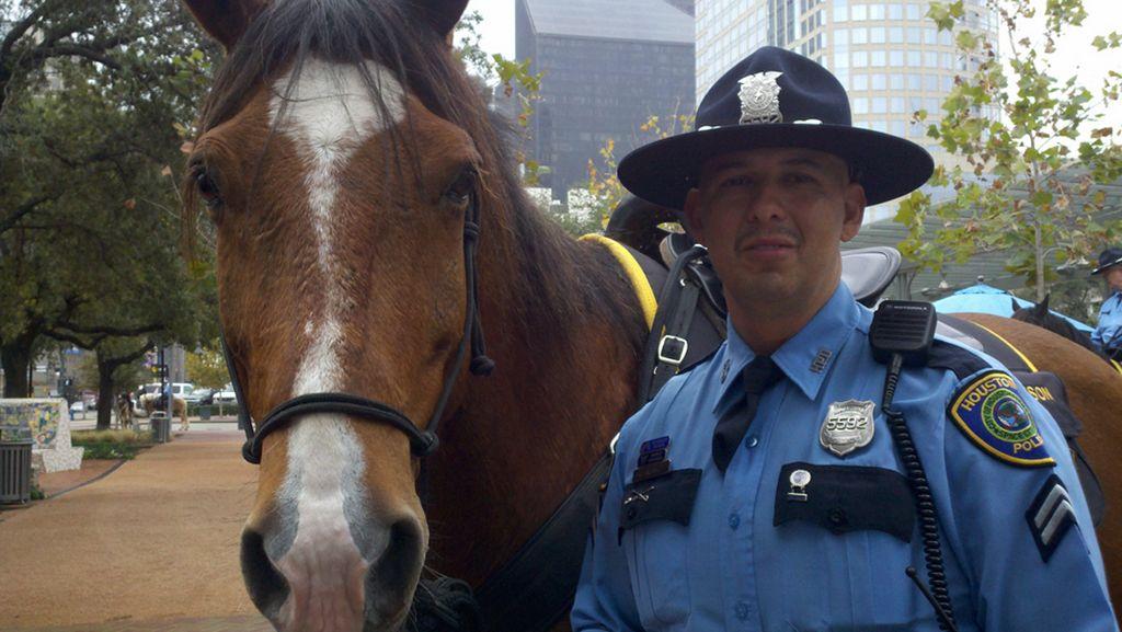 Los caballos de la Policía de Houston necesitan ayuda