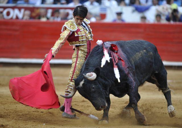 Anonymous en contra de corridas de toros