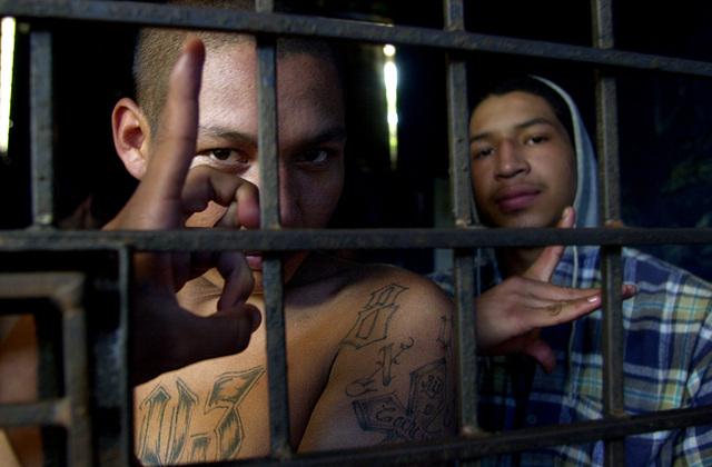Nexo entre pandillas y cárteles mexicanos