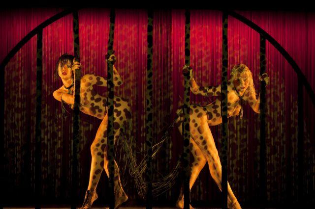 Regresa la fiesta al Crazy Horse, bailarinas terminan huelga