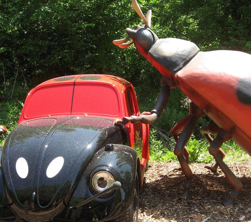 Infestación de insectos en Zoológico Brookfield