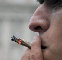 Despenalizarán uso de marihuana