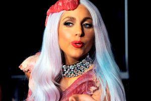 Se buscan cucarachas para Lady Gaga (Fotos)