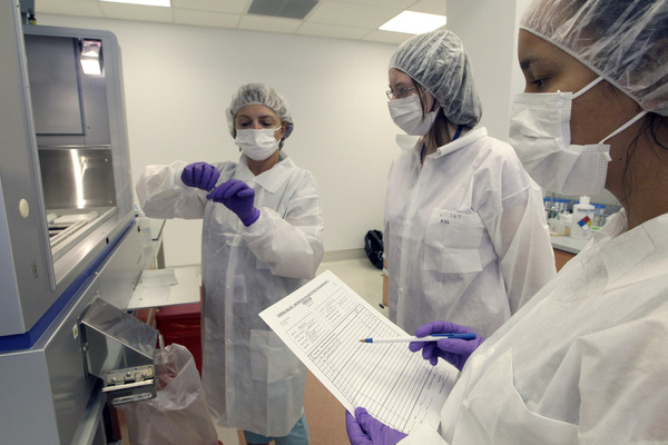 'Reviven' células madre de cadáveres