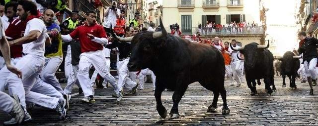 Toros no pudieron cornear a alguien hoy en San Fermín (fotos)