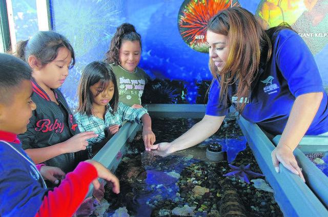 ¡A aprender, reír y explorar!Guía de museos familiares en el sur de California