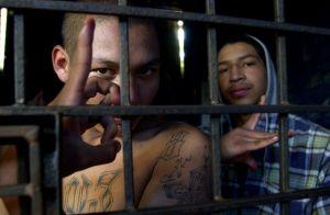 Líder y tres miembros de pandilla latina son acusados de intento de asesinato en el sur de California