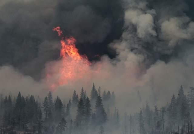 Casi 1,900 bomberos luchan contra el fuego en un terreno empinado con densos bosques, de difícil acceso.