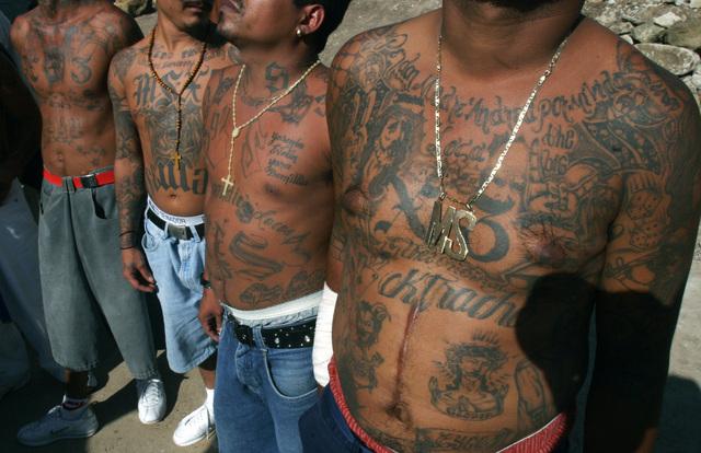 Miembros de la Mara Salvatrucha muestran sus cuerpos tatuados que hablan de su lealtad con la organización.