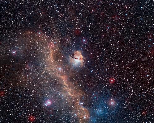 """Telescopio capta nueva imagen de """"gaviota cósmica"""""""