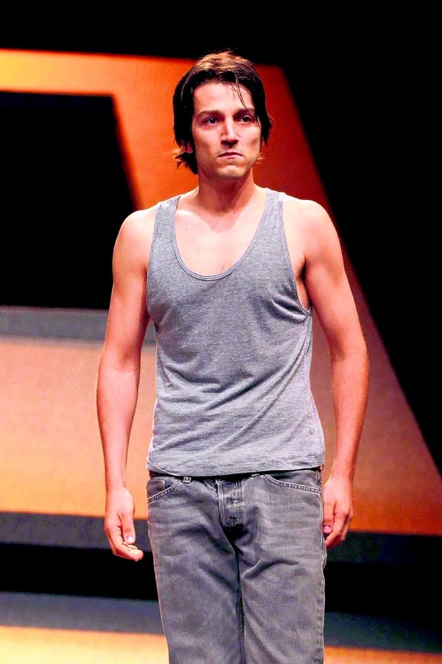 Diego Luna regresa al teatro