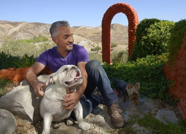 César Millán vuelve a vivir (Fotos)