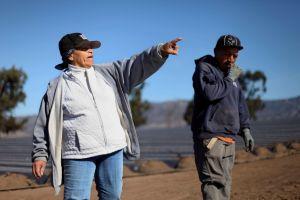 Alientan entre latinos los cultivos orgánicos