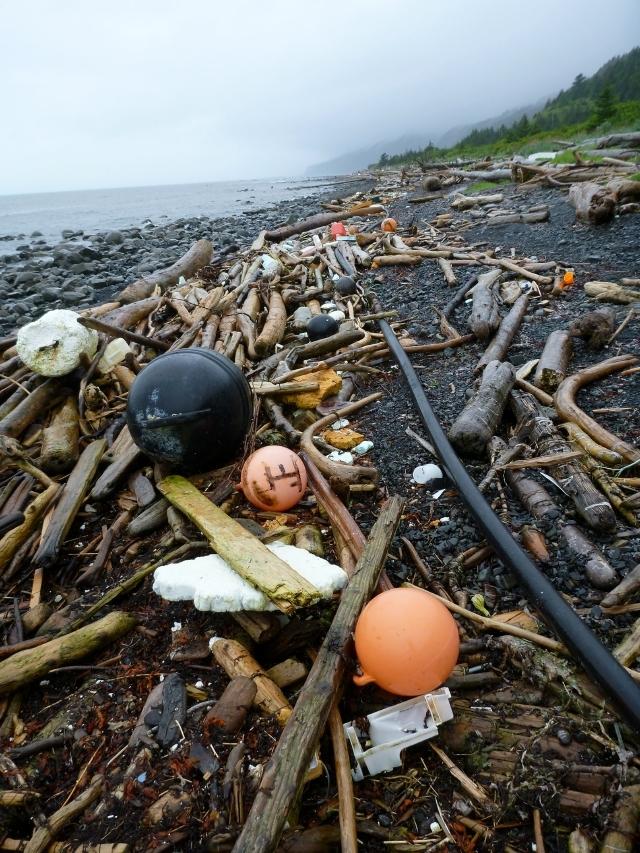 Escombros del tsunami de Japón llegarán a California