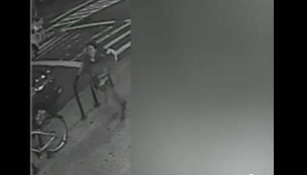 Acusan de homicidio a mujer que empujó a hombre en tren 7 de NY