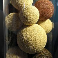 Naciones Unidas declarará 2013 'el Año de la Quinoa'