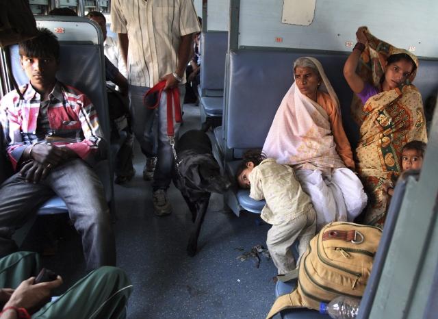 Mueren 16 en  India por ataque