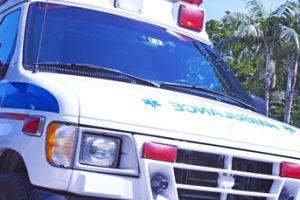 Muere menor atacado por bulldogs en Florida