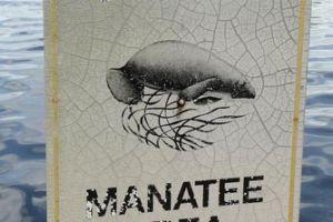 Autoridades buscan hombre que se lanzó sobre manatíes en FL
