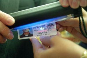Asamblea de California aprueba licencias para indocumentados