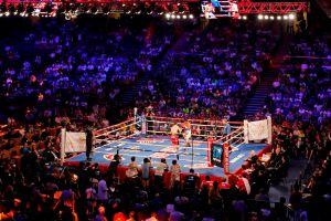 Cuba regresa al boxeo de paga