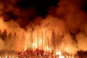 Incendio cerca de Yosemite se triplicó (video, mapa)