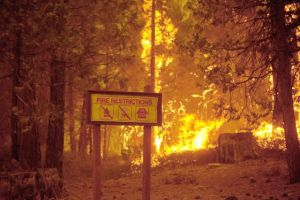Incendio en Yosemite pone en emergencia a San Francisco