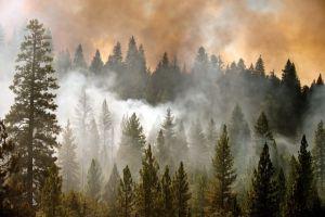 Incendio en el norte de California continúa con fuerza