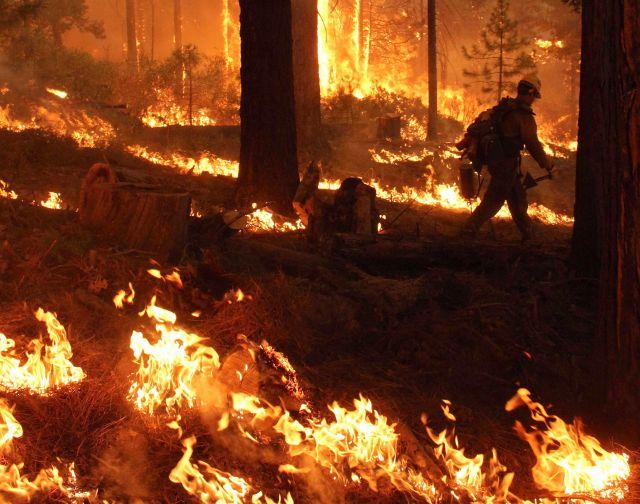 Un cazador causó el incendio en Yosemite (video)