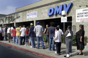 5 datos de licencias para indocumentados en CA