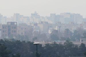 OMS incluye la contaminación ambiental como causa de cáncer