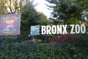 Entretenimiento para la familia: Bronx Zoo