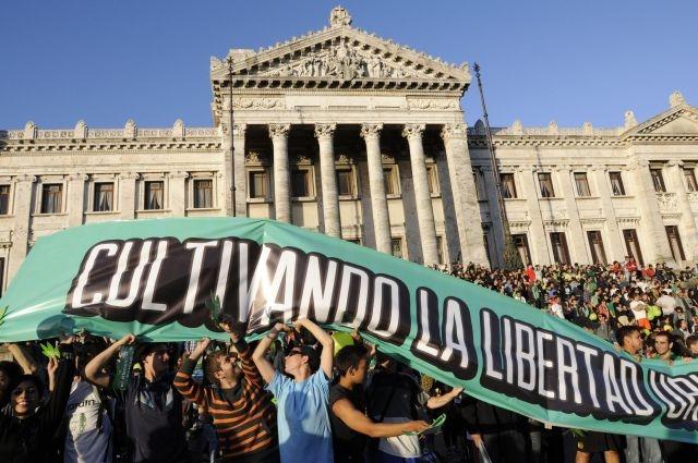 Uruguay aprueba la producción y venta de marihuana