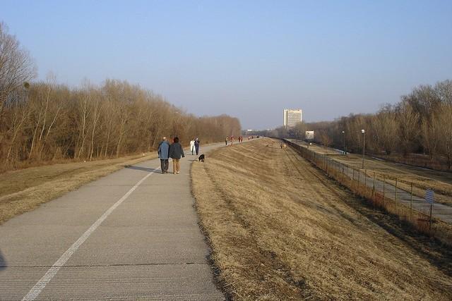 Caminar es la clave para una buena salud