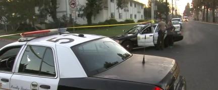 La Policía del condado de Los Ángeles pudo actuar contra el sospechoso, después de que la madre del niño lo arrebatara al pistolero.