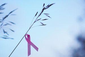 Pruebas de cáncer de mama que debes realizarte