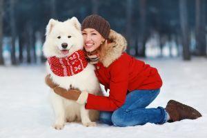 5 accesorios para tu perro