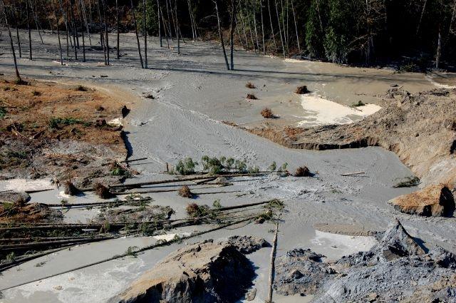 Confirman 14 muertos tras alud de lodo en Washington