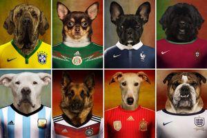 Los perros del Mundial y la canción no oficial de Shakira (Video)