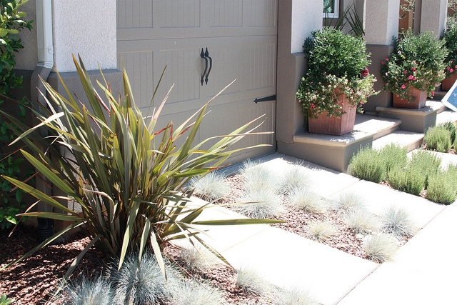 Low-maintenance landscaping or xeriscaping for your home