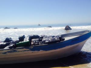 Tres arrestos por bote con 1 tonelada de marihuana en Malibu