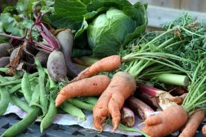 How to prepare organic recipes on a budget