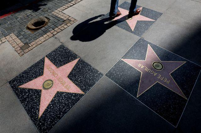 ¡Pitbull, Sofía Vergara y Eugenio Derbez tendrán estrella!