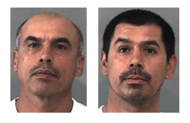 Israel Martínez, de 49 años de edad, y Wilivalvado Arteaga Martínez, 34 años de edad, fueron procesados con cargos de conspiración y cultivación de marihuana, ambos clasificados como crimines graves.