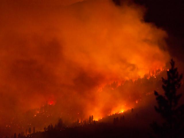 """El incendio forestal """"El Portal"""" en el Parque Nacional Yosemite, en California, amenaza una zona donde hay decenas de secuoyas."""