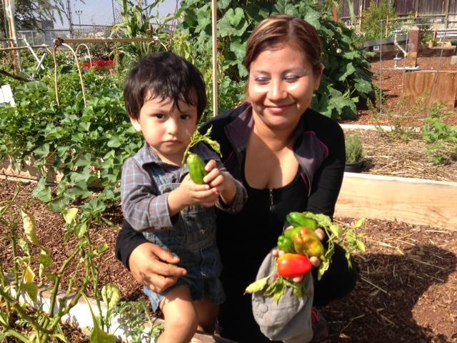Migrantes 'sanan' en jardines vecinales de Los Ángeles