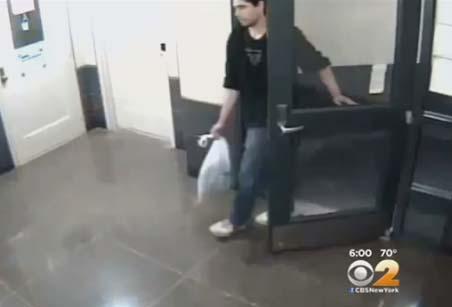Presunto violador en Manhattan logra escapar trepándose en árbol (video)